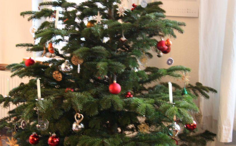 Die Weihnachtsgeschichte – Perspektivwechsel