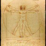 Der Mensch in seinen Proportionen von Da Vinci